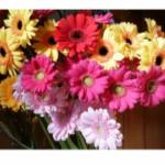 【苦手な相手にお花を送れるようになった方法とは?】